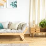 Jak rośliny domowe oczyszczają powietrze? 3 przykłady